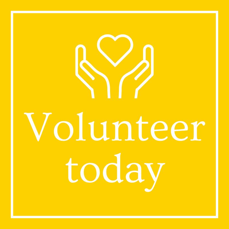 Volunteering at PRA Thumbnail Image
