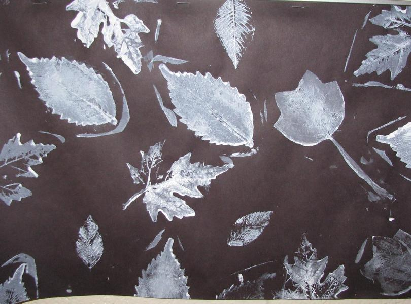 Winter Leaf Prints