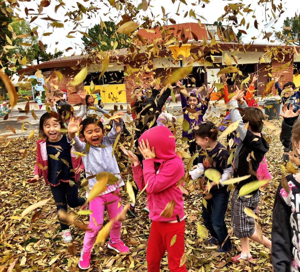 Soleado Sun Students playing in fall leaves
