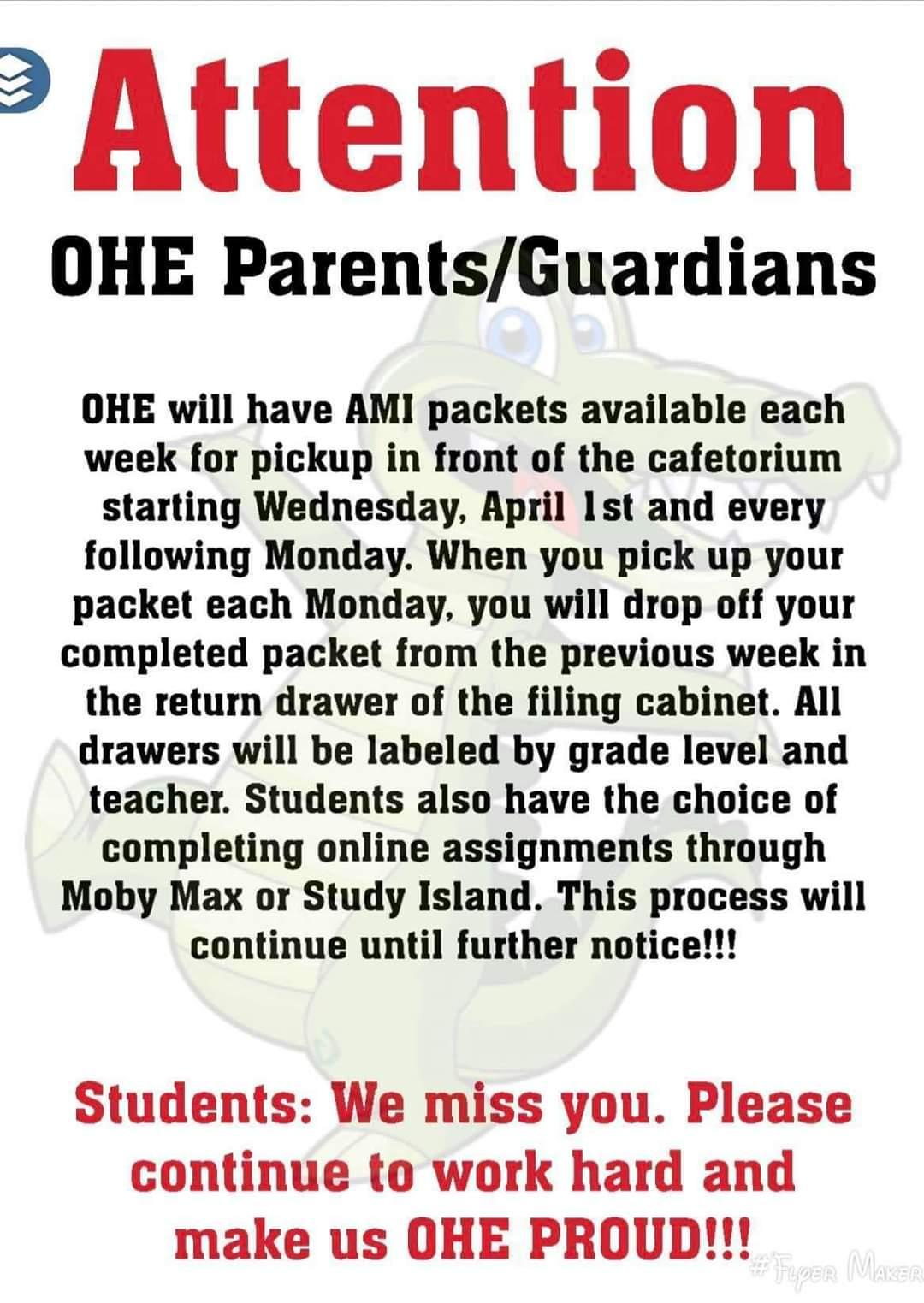 OHE AMI packet information