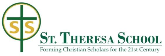 STS Logo