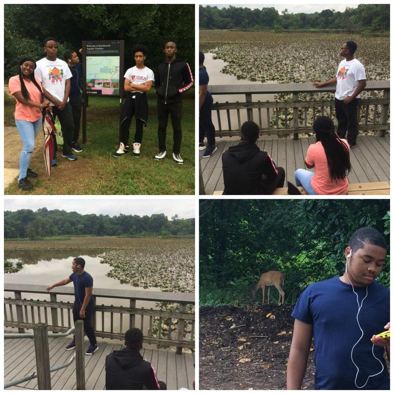 ACAD Summer Interns Visit Kenilworth Aquatic Gardens Thumbnail Image