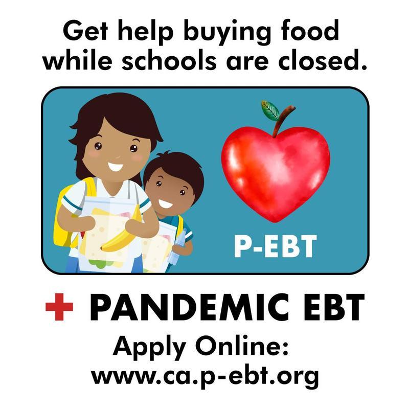 Pandemic EBT (P-EBT)