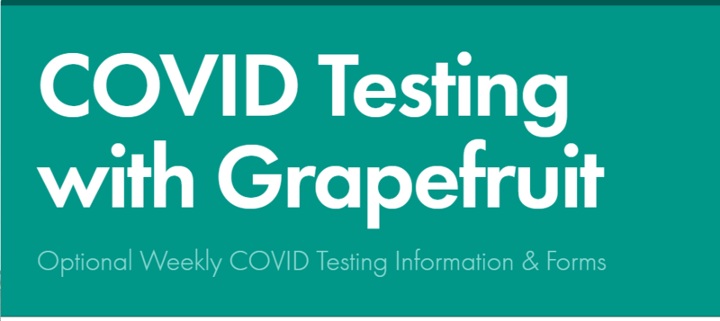 Covid Testing with Grapefruit with teal background