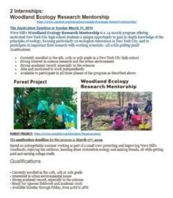 Woodland ecology internships