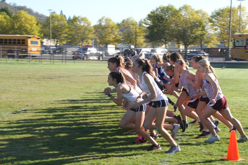 LCA Cross Country Competes in Regionals! Featured Photo