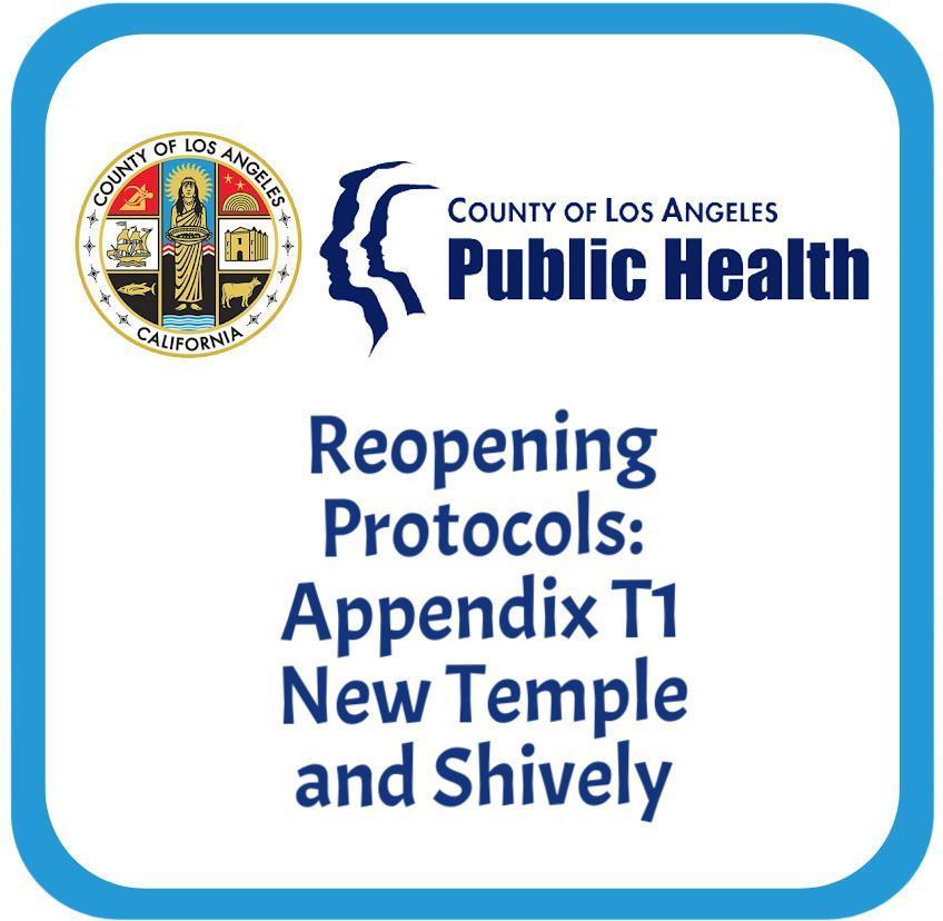 Appendix T1