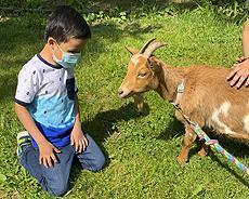 Greenburgh Nature Center 5.20.21 Goats