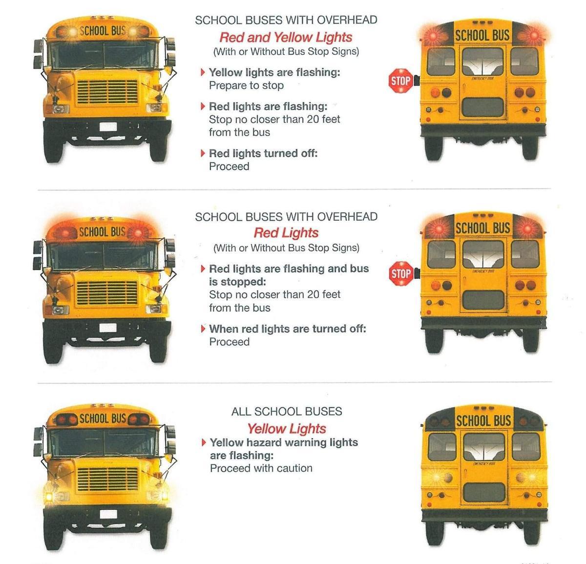 Bus Lights