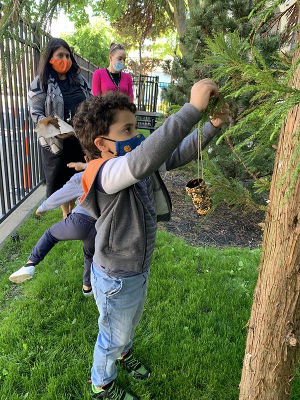 Teachers behind boy hanging bird feeder on tree