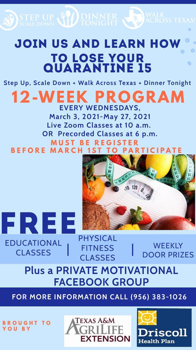 Flyer for the Step Up Scale Down Program