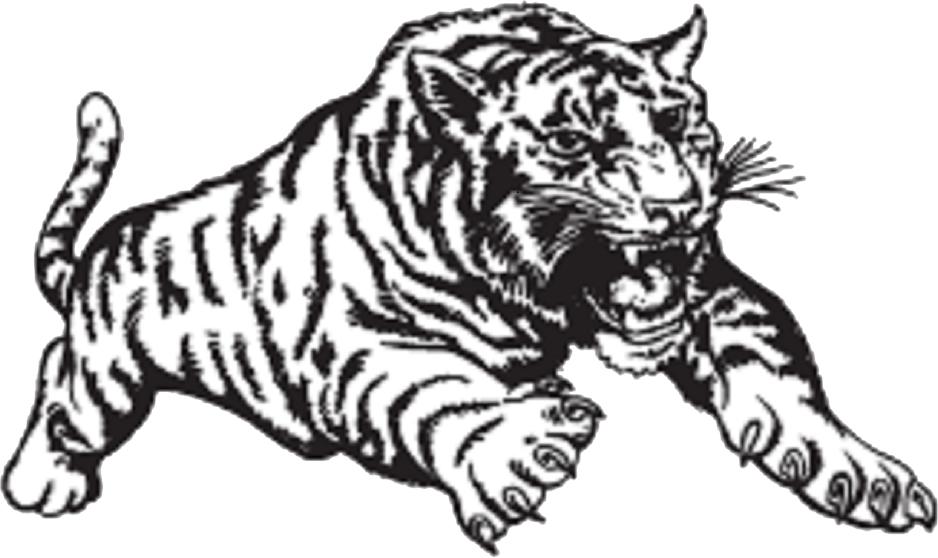 SISD Tiger