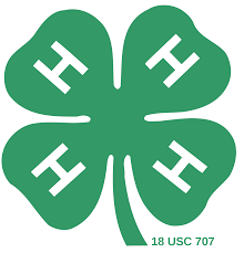 Linden Peters 4-H Club Featured Photo