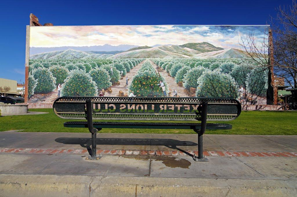 City of Exeter- Orange Groves Mural with Lion's Club Bench