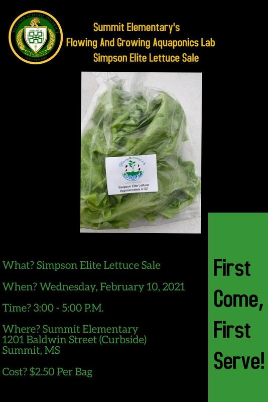 Summit Elementary's Flowing and Growing Aquaponics Lab Lettuce Sale 2021