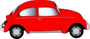 car_beetle.jpg