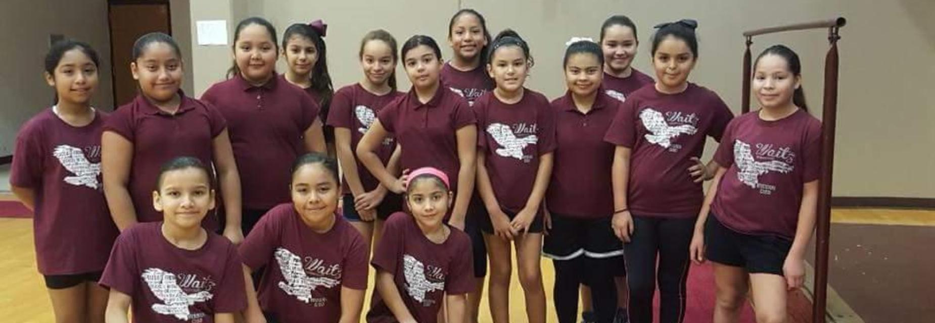 Waitz volleyball girls