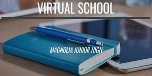 Virtual School Graphic (webpost).jpg