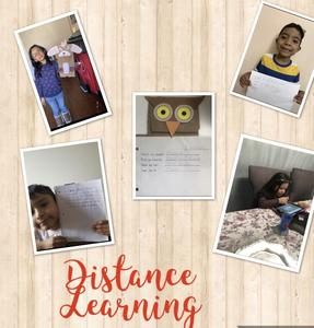 distance learning group work