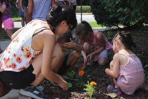 Kindergarten students plant a garden