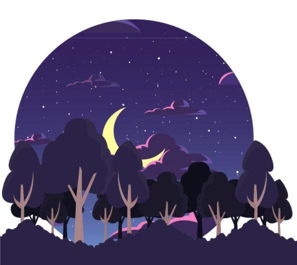 Forest at night with stars and a crescent moon behind trees in the forest