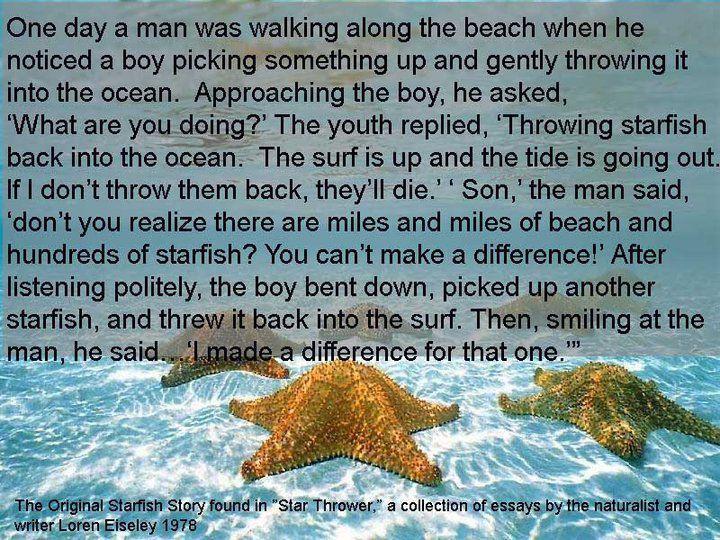 Starfish Story