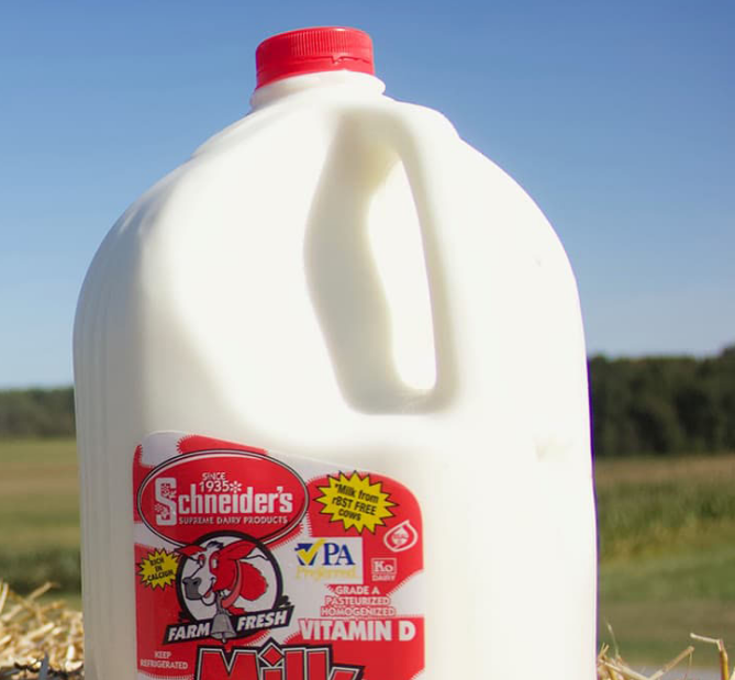 Schneider's Dairy - Milk Distribution Featured Photo