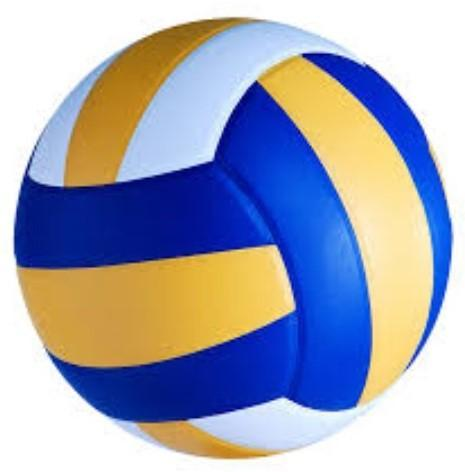 blue and gold volleyball