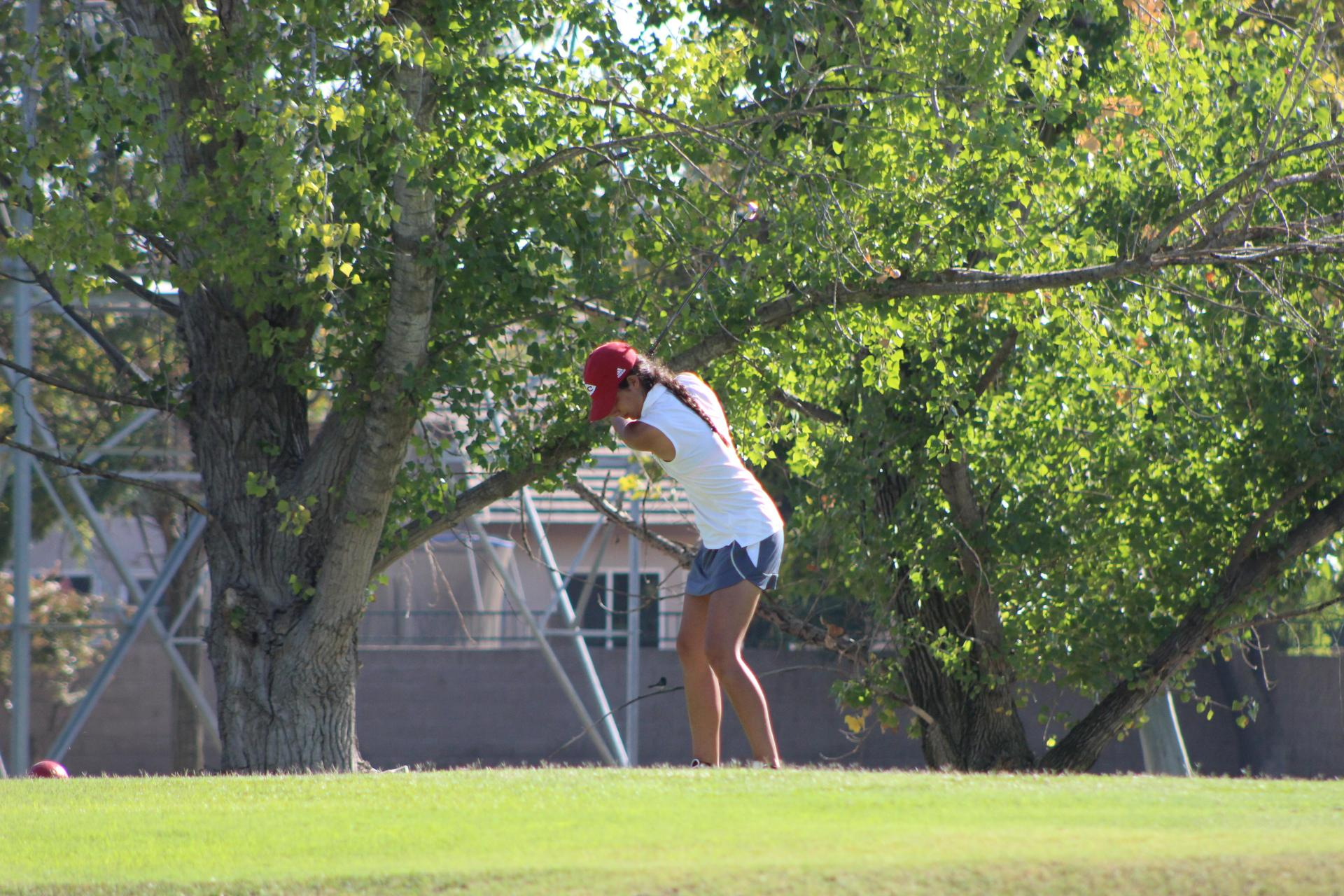Girls golfing vs SJ Memorial