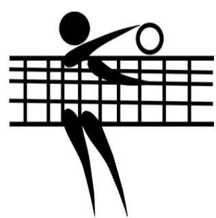 Grass Volleyball Tournament Fundraiser