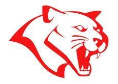 Tomball Cougar