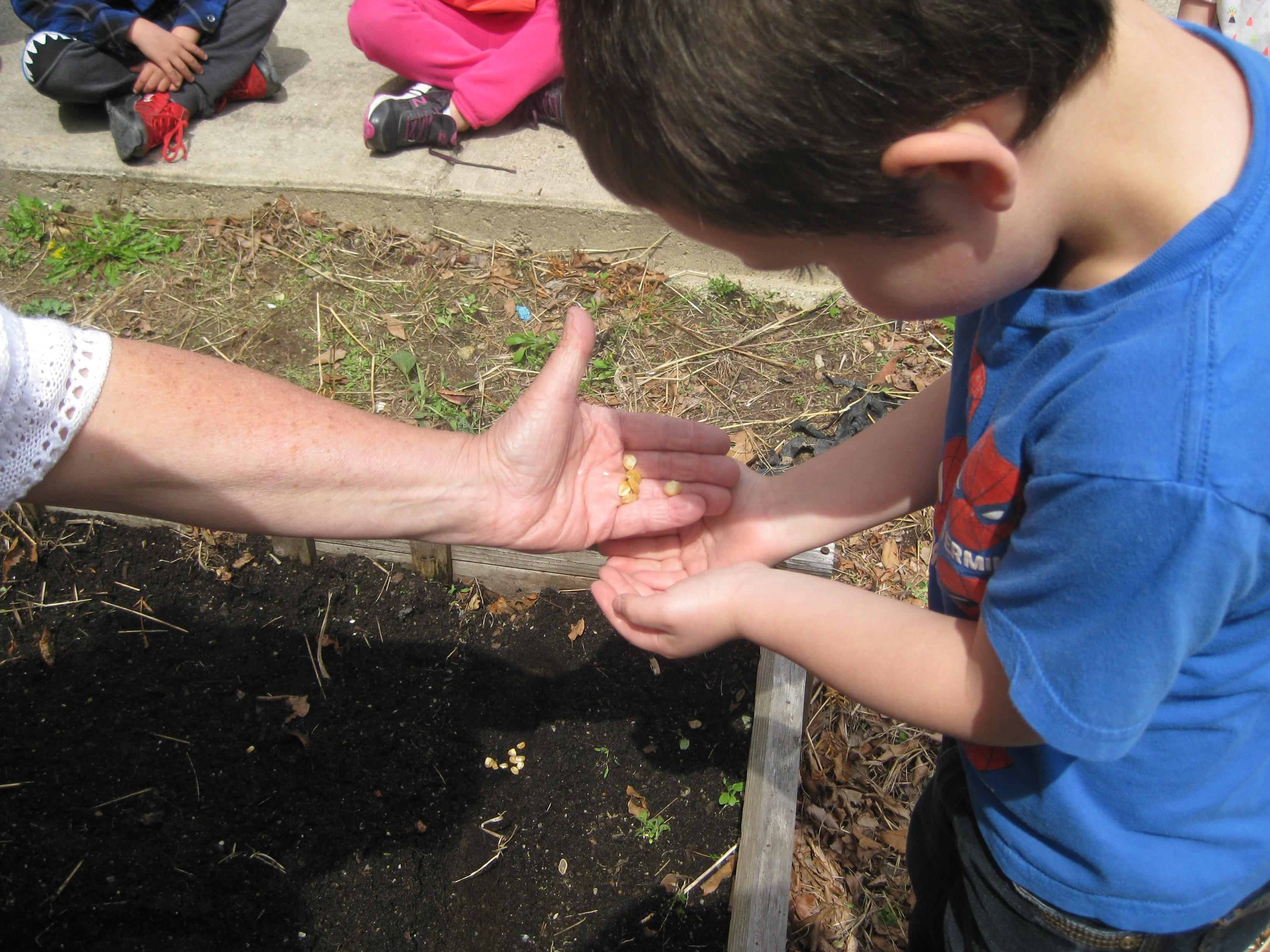 photo of a gardening activity at Eastford Road Elementary School