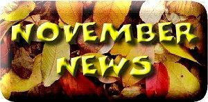 November Newsletter! Featured Photo