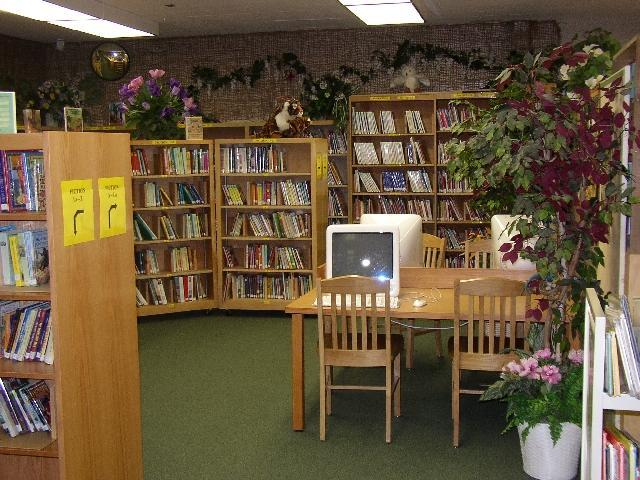 Rainforest AR Library