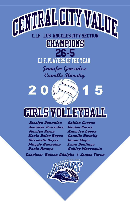 2015 Girls Volleyball Championship Banner