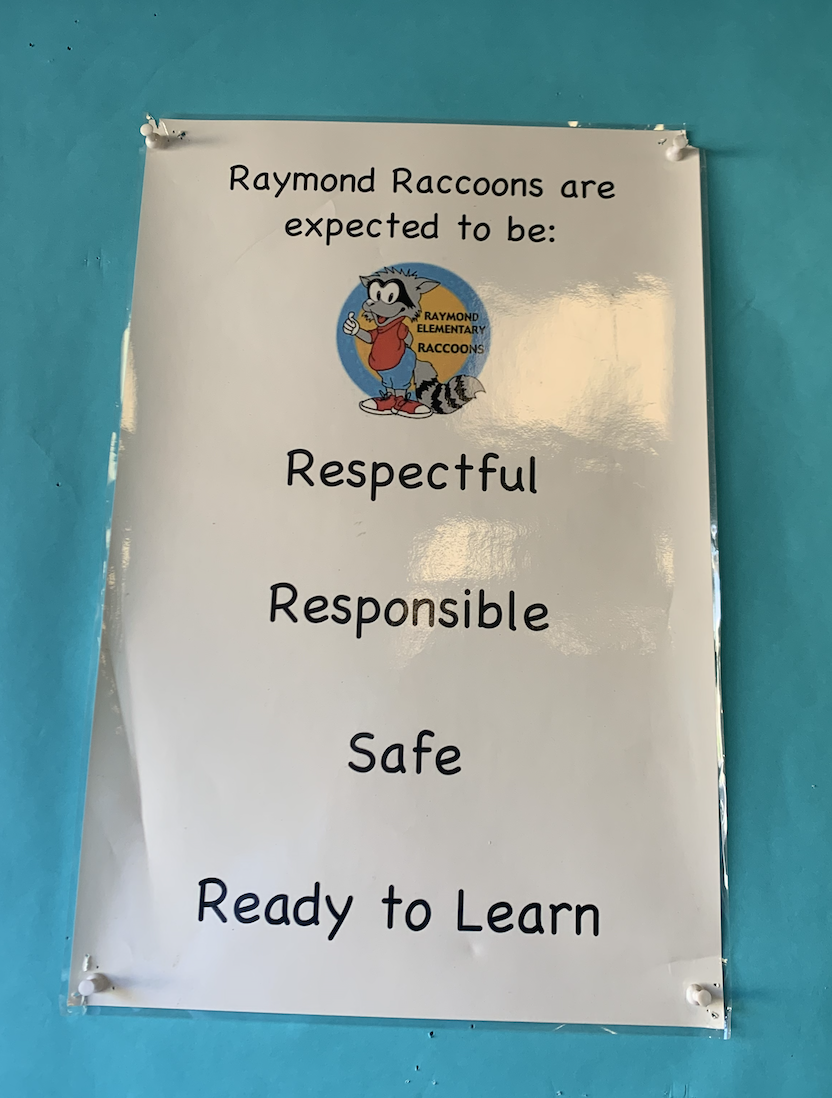Raymond Racoon Expectations