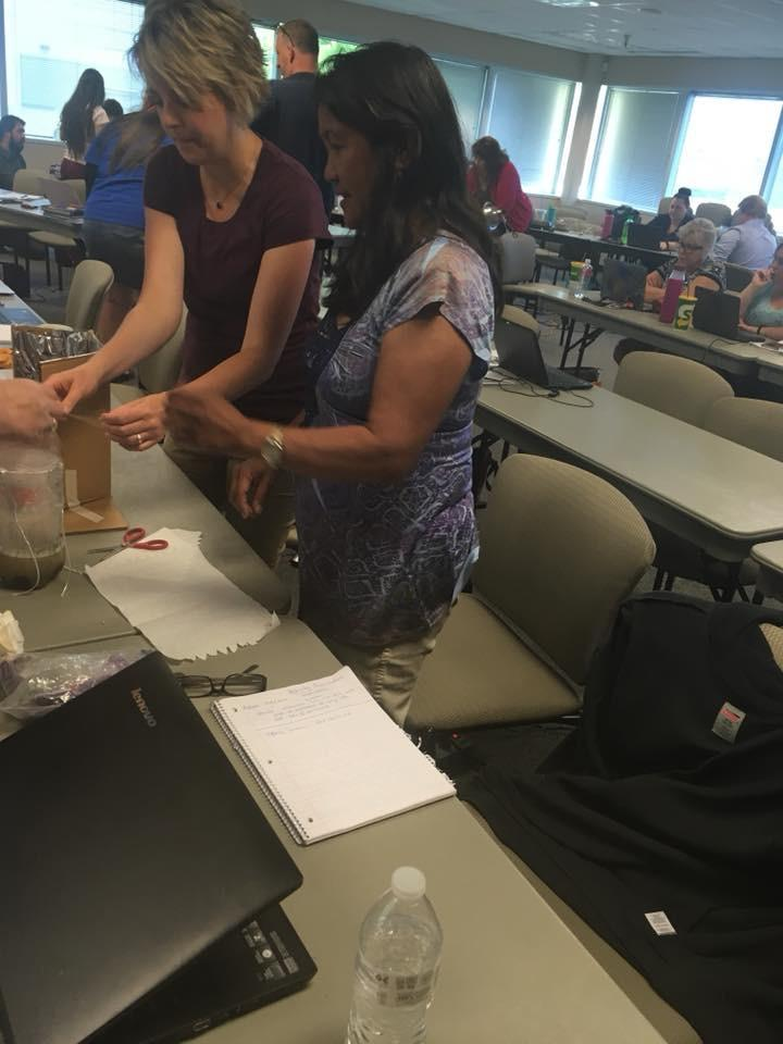Summer STEM Endorsement Class