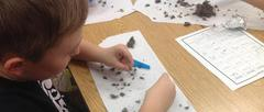 Student sorting through owl pellet with tweezers