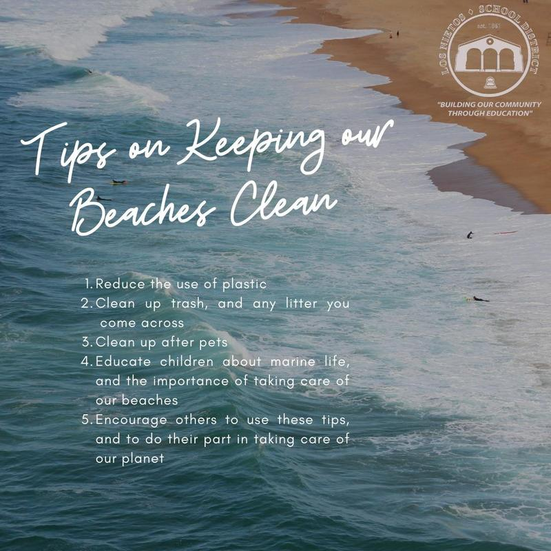 Tips on Keeping our Beaches Clean Featured Photo