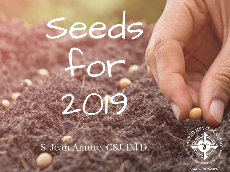 Seeds for 2019 Prayer and Reflection Featured Photo