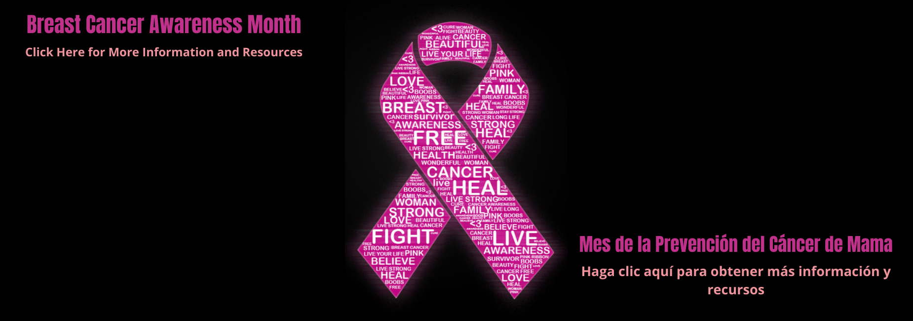 Breast Cancer Awareness Month Banner in Blank and Pink (Bilingual)