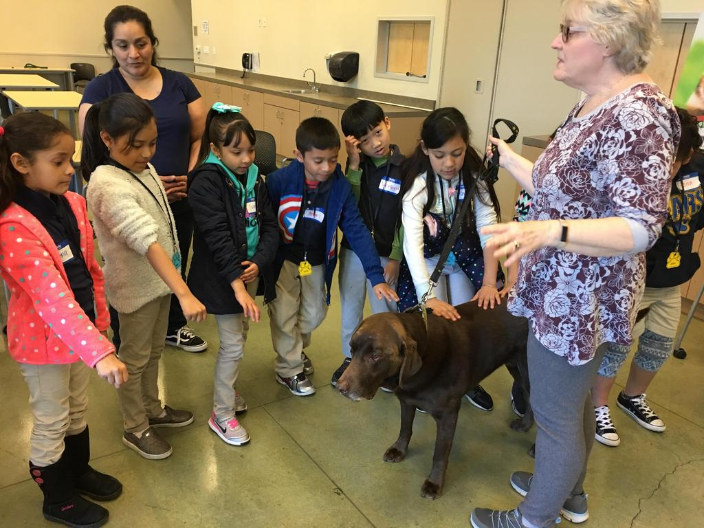 students pet dog led by volunteer