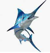 Clipart of a marlin