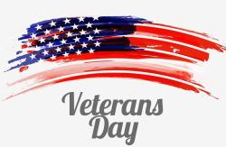 Veteran's Day flag image