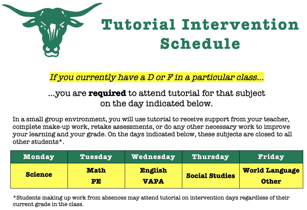 Tutorial intervention schedule