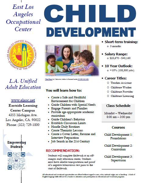 Child Development Flyer