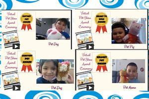Stuffed animals awards collage