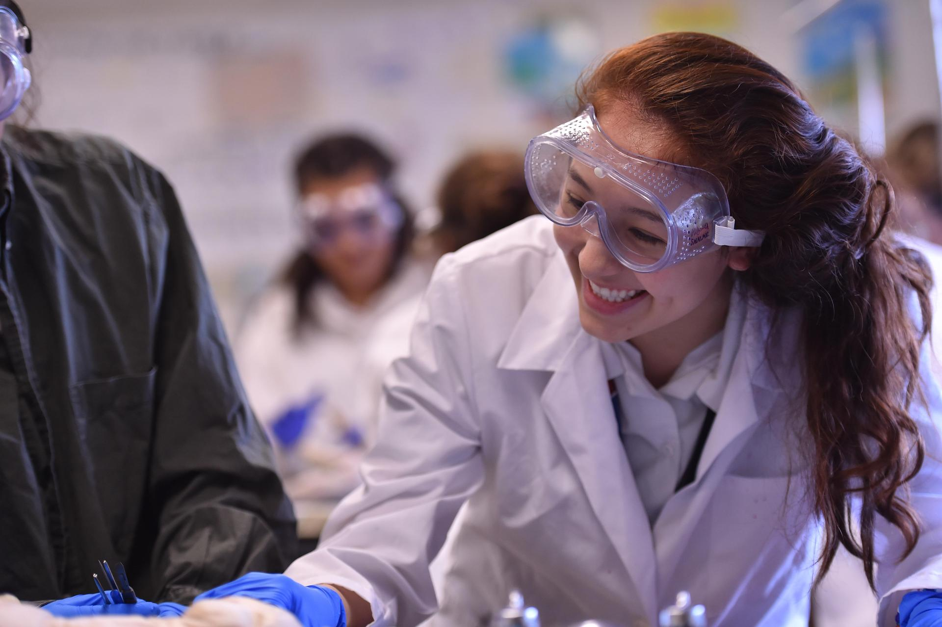 Student experiments in science class