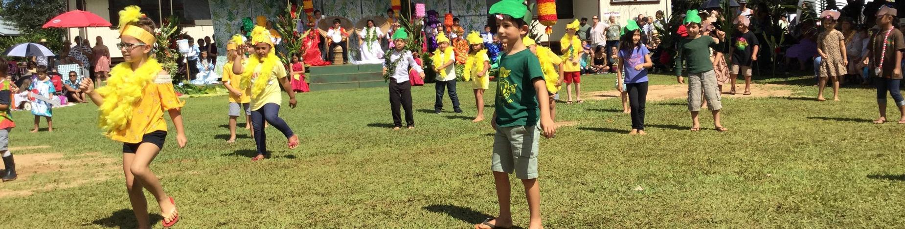 Kindergarten class dance to Coqui Frog song!