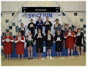 Gananda's Willard wins 50 Freestyle event and qualifies for NYS Championships in Section V Championships November 2018